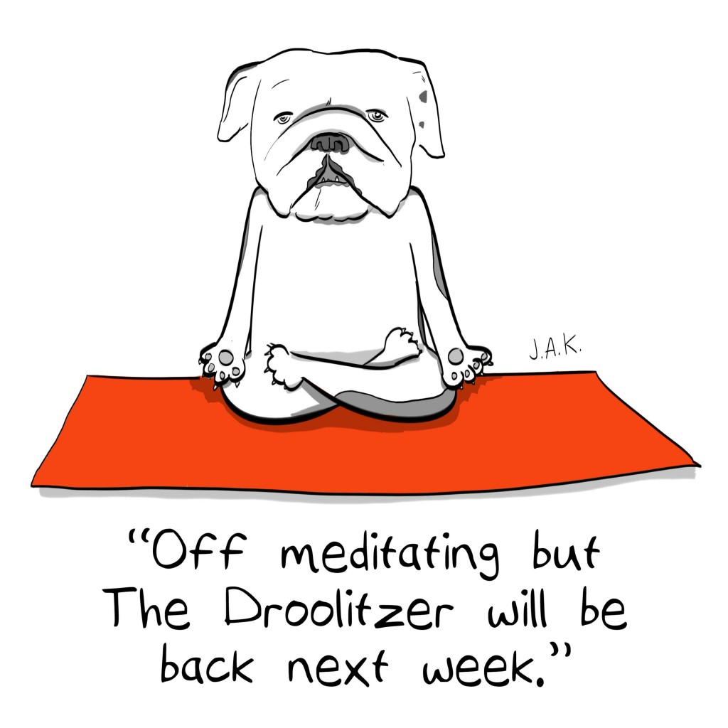 bogie_meditation